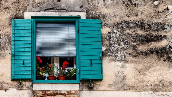 Flowers In Window Box
