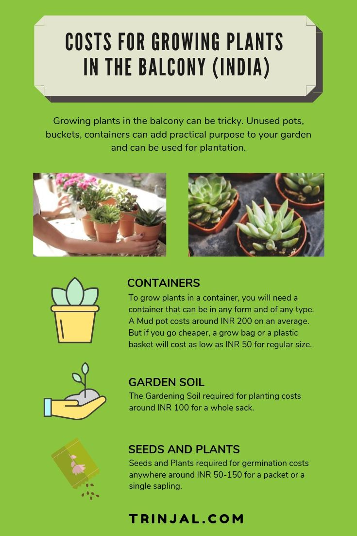 costs for container garden