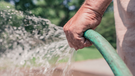 save water hydroponics