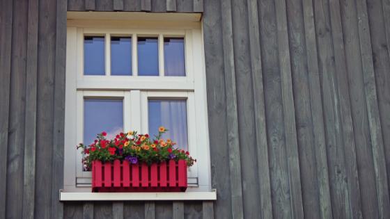 Flowers In Window Boxes