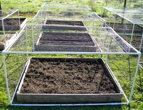 Garden Net for Climbing Plants